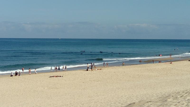 Surf report Vieux Boucau - France (40) 2017-08-12 11:00:00