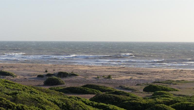 Wind report Sidi Kaouki - L'Oued - Maroc (MA) 2018-04-29 14:00:00