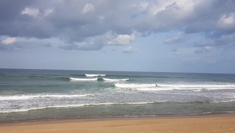 wave report Hossegor - La Gravière - France (40) 2018-08-25 09:00:00