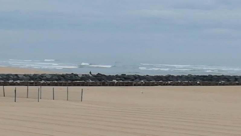Surf report Vieux Boucau - France (40) 2019-08-07 08:00:00