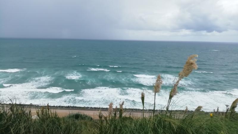 Surf report Côte des Basques - France (64) 2019-08-12 16:00:00