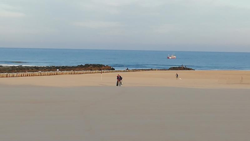 Surf report Vieux Boucau - France (40) 2019-08-14 08:00:00