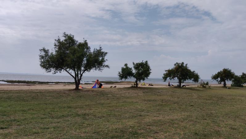 Wind report Taussat - Plage du Port - France (33) 2019-08-27 16:00:00
