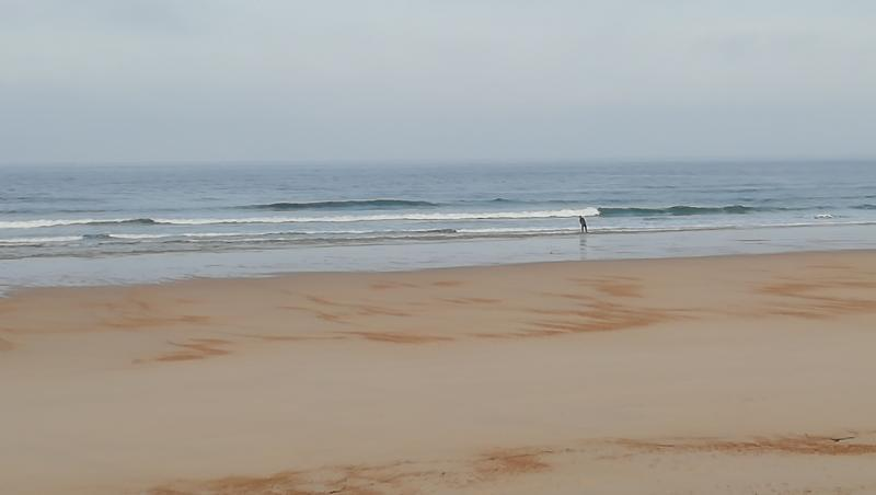 Surf report Vieux Boucau - France (40) 2019-10-29 09:00:00