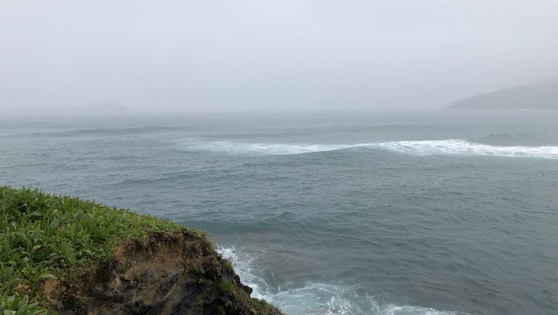 Surf report Mundaka - Espagne (ES) 2020-02-25 16:00:00
