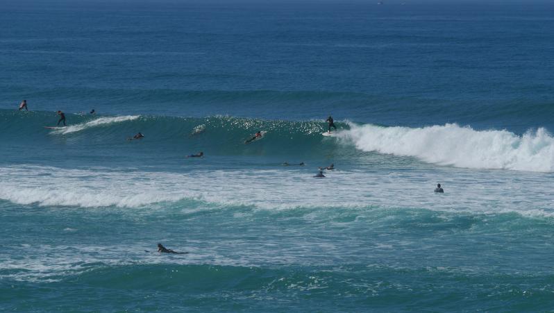 Surf report FR, Seignosse - Les Estagnots (40) posté par anonyme