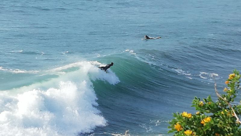 Surf report La Couronne - France (13) 2020-12-29 11:00:00
