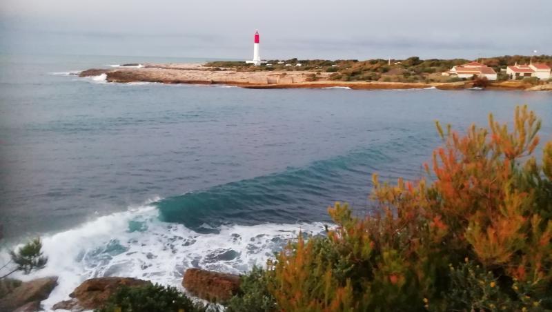 Surf report La Couronne - France (13) 2020-12-30 08:00:00