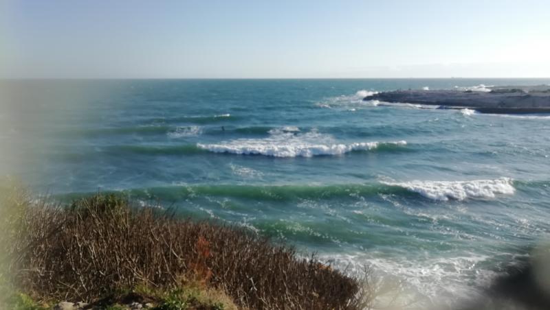 Surf report La Couronne - France (13) 2021-02-20 16:00:00