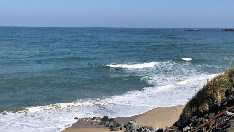Surf report FR, Marbella (64) posté par axel