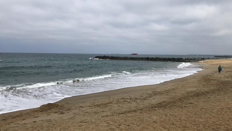 Surf report FR, Anglet Surf Club (64) posté par axel