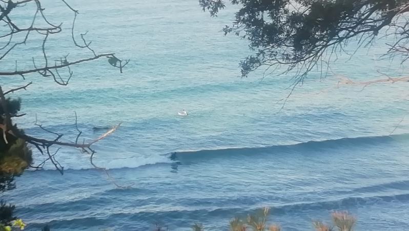 Surf report Plage du Verdon - France (13) 2021-05-02 08:00:00