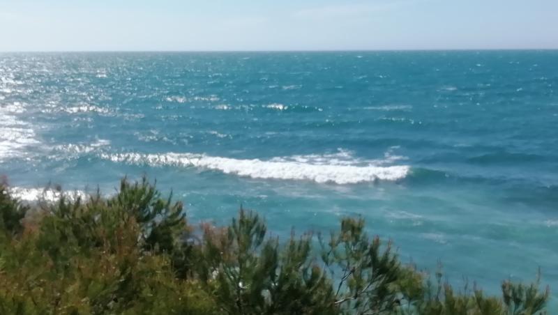 Surf report L'Arquet - France (13) 2021-05-09 10:00:00
