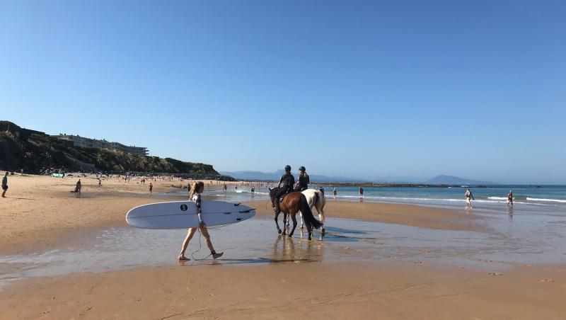 Surf report Côte des Basques - France (64) 2021-09-05 10:00:00