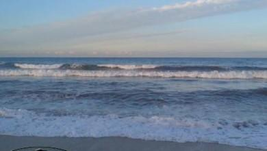 Surf report FR, Le Prado (13) du 2007-10-30 12:00:00