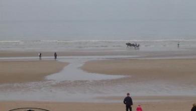 Surf report FR, Le Menhir (14) du 2007-11-02 12:00:00