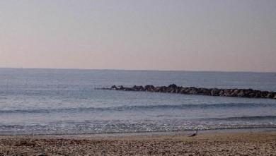 Surf report FR, Palavas-les-Flots - Rive Droite (34) du 2007-11-02 12:00:00