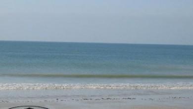 Surf report FR, La Couarde (17) du 2007-11-04 12:00:00