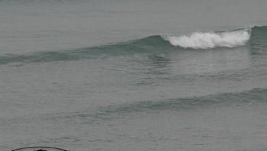 Surf report FR, Bidart Centre (64) du 2007-11-13 12:00:00