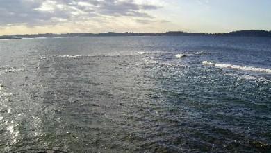 Surf report FR, L'Almanarre (83) du 2007-11-16 12:00:00