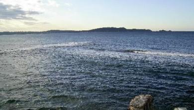 Surf report FR, L'Almanarre (83) du 2007-11-17 12:00:00