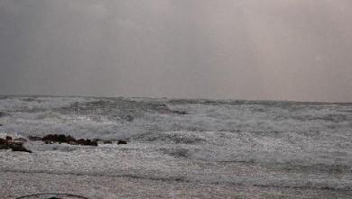 Surf report FR, Palavas-les-Flots - Rive Droite (34) du 2007-11-20 12:00:00