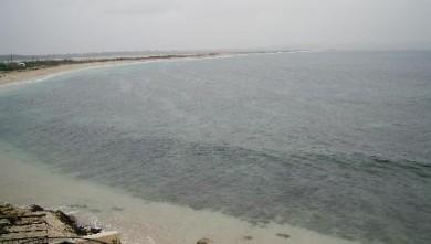 Surf report FR, L'Almanarre (83) du 2007-11-22 12:00:00
