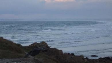 Surf report FR, La Torche (29) du 2007-11-22 12:00:00