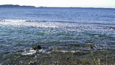 Surf report FR, L'Almanarre (83) du 2007-11-26 12:00:00
