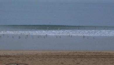 Surf report FR, Pornichet (44) du 2007-11-27 12:00:00