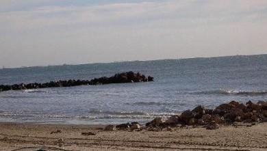 Surf report FR, Palavas-les-Flots - Rive Droite (34) du 2007-11-28 12:00:00