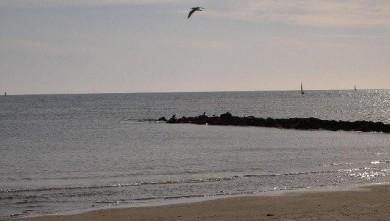 Surf report FR, Palavas-les-Flots - Rive Droite (34) du 2007-12-02 12:00:00