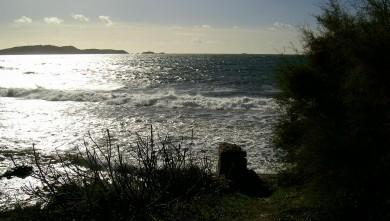 wave report FR, L'Almanarre (83) du 2007-12-07 12:00:00