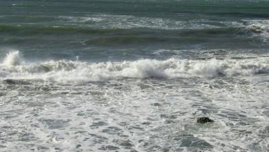 Surf report FR, L'Almanarre (83) du 2007-12-11 12:00:00