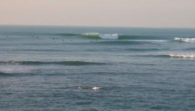 Surf report FR, Guethary Parlementia (64) du 2007-12-14 12:00:00