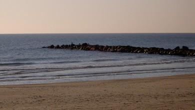 Surf report FR, Palavas-les-Flots - Rive Droite (34) du 2007-12-20 12:00:00