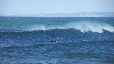 wave report FR, La Torche (29) du 2008-05-25 12:00:00