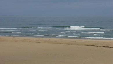 Surf report FR, Seignosse - Les Bourdaines (40) du 2008-06-04 12:00:00