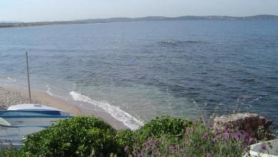 Surf report FR, L'Almanarre (83) du 2008-06-12 12:00:00