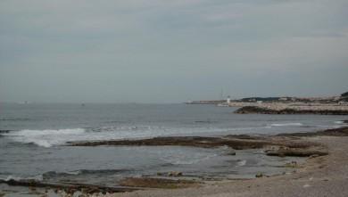 Surf report FR, Sausset les Pins - Plage du Port (13) du 2008-06-15 12:00:00