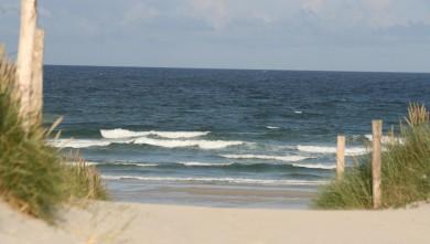 Surf report FR, Plovan (29) du 2008-06-18 12:00:00