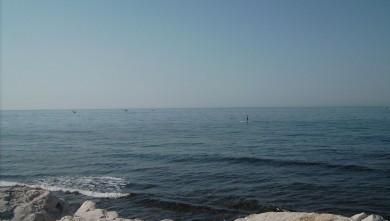 Surf report FR, Sausset les Pins - Plage du Port (13) du 2008-06-21 12:00:00