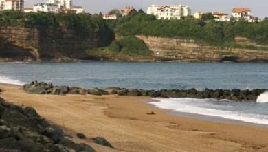 Surf report FR, Anglet VVF (64) du 2008-06-23 12:00:00