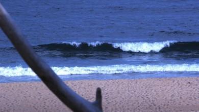Surf report FR, Seignosse - Les Casernes (40) du 2008-06-25 12:00:00