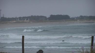 Surf report FR, Pors Carn (29) du 2008-06-28 12:00:00