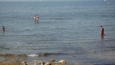 Surf report FR, Sausset les Pins - Plage du Port (13) du 2008-06-29 12:00:00