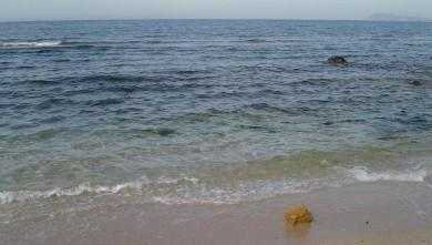 Surf report FR, L'Almanarre (83) du 2008-06-30 12:00:00