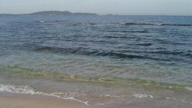 Surf report FR, L'Almanarre (83) du 2008-07-01 12:00:00