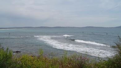 Surf report FR, L'Almanarre (83) du 2008-07-05 12:00:00