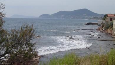Surf report FR, L'Almanarre (83) du 2008-07-08 12:00:00